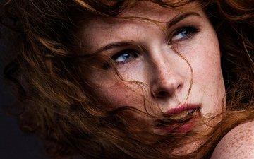 девушка, портрет, взгляд, модель, волосы, лицо, веснушки, рыжеволосая