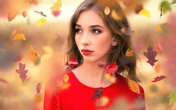 листья, девушка, портрет, взгляд, осень, модель, лицо, листопад, inese stoner