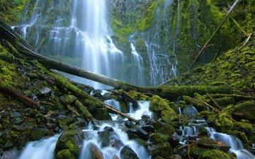 камни, водопад, мох, бревна, орегон, каскад