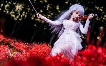 цветы, девушка, скрипка, кукла, волосы
