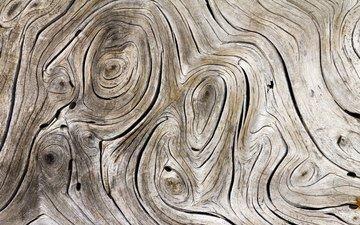 полосы, дерево, серая, древесина, дерева, с серыми, streaks