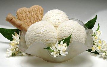 цветы, мороженое, сладкое, мороженное, десерт, сладенько