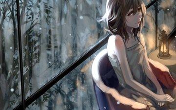 art, plants, girl, anime, lantern, window, kuroduki