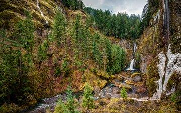 горы, природа, дерево, лес, водопад