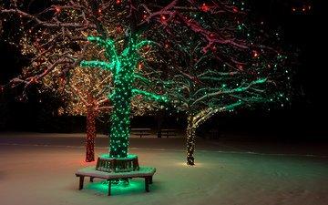 night, lights, snow, nature, tree, winter, park, bench