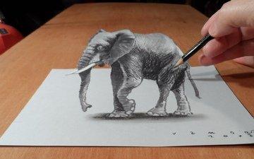 рисунок, слон, 3д