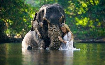 вода, река, девушка, слон, грудь, браслет, хобот, блузка, блонинка