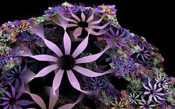 abstraction, color, black background, flowers