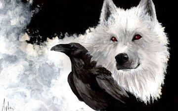 art, snow, look, white, beak, raven, painting, wolf, ghost, game of thrones