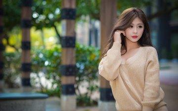 женщины, модель, свитер, длинные волосы, азиатский, каштановые волосы, глубина резкости