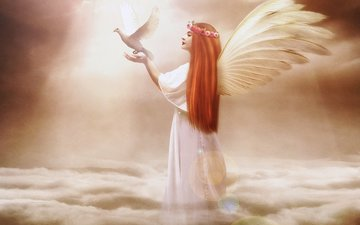 the sky, clouds, girl, fiction, wings, angel, profile, bird, hair, face, hands, dove, long, jennifer gelinas