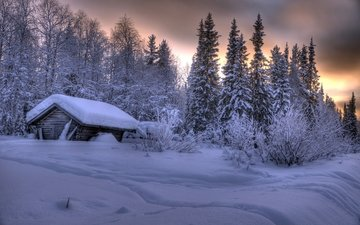 trees, snow, forest, winter, the snow, hut, finland, lapland, akaslompolo, ylläs, ivushka