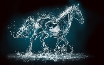 horse, water, squirt, rendering, animal