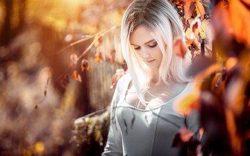 природа, листья, девушка, платье, поза, блондинка, взгляд, осень, грудь