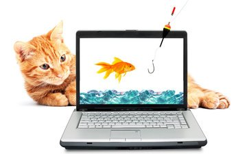 вода, кот, рыжий, золотая рыбка, ноутбук, удочка, крючок
