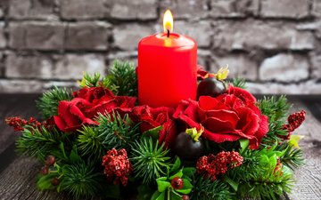 flowers, tree, candle, christmas, red