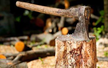 дерево, ствол, топор, секира, метал, дерева