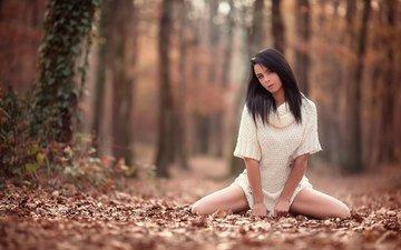 девушка, взгляд, осень, ножки, laurent kc, arya