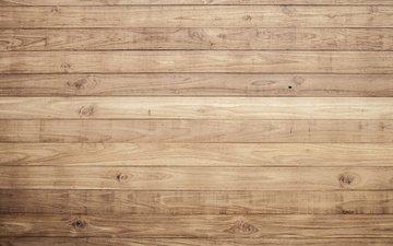 дерево, доски, пол, дерева, floating floor, естественная