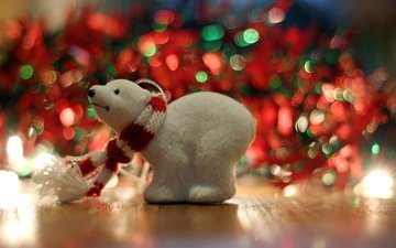 macro, bear, toy, holiday