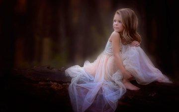 лес, платье, девочка, сидит, бревно, прелесть, danielle waage