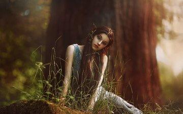 арт, дерево, лес, девушка, фантазия, сидит, эльф, бревно, agnieszka lorek