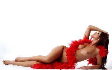 beauty, chest, legs, photographer, posing, body, nude, the temptation, boa, melisa mendiny, melissa, kristina, gu wu, passionate