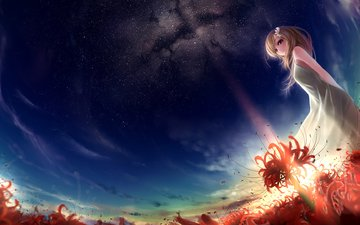the sky, flowers, girl, stars, anime, red stars