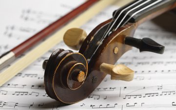 violin, wood, score