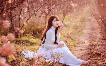 девушка, сад, яблоко, азиатка