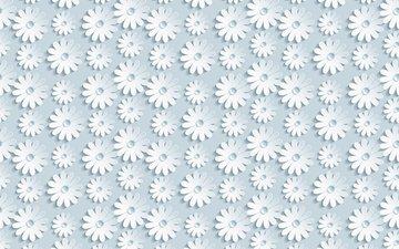 цветы, ромашки, 3д