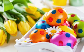 colorful, spring, tulips, easter, eggs