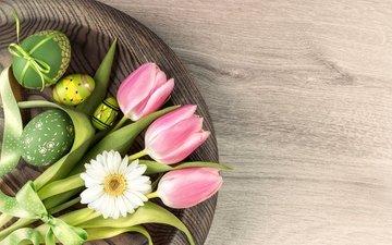 daisy, tulips, easter