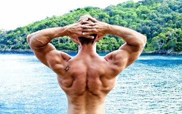 pose, male, men, back, bodybuilder