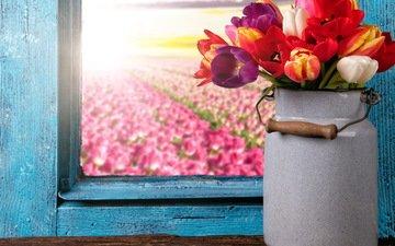 букет, тюльпаны, окно, тульпаны, цветы, красочная