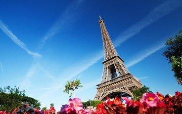 цветы, париж, архитектура, здание, франция, эйфелева башня, франци, эйфелева башня