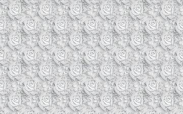 цветы, розы, объем, 3д