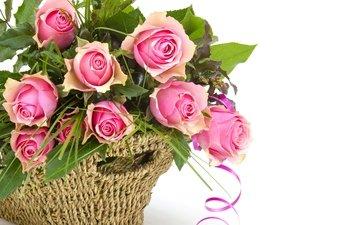 розы, букет, розовые, окрас, роз, пинк