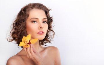 желтый, девушка, цветок, взгляд, белый фон, макияж, прическа, красотка, орхидея, шатенка