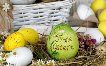 цветы, яйца, зеленые пасхальные
