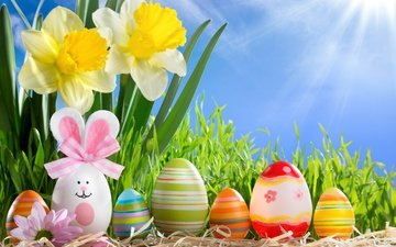 flowers, the sun, colorful, spring, easter, eggs, daffodils