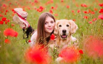 девушка, лето, собака