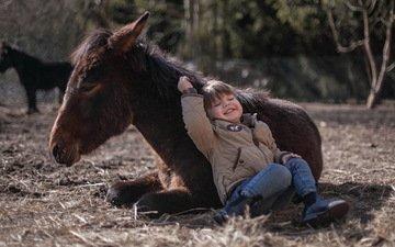 фон, мальчик, пони