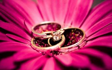 цветок, камень, кольца