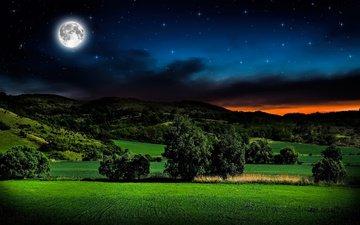 небо, трава, ночь, горы, звезды, поле, горизонт, луна