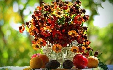 цветы, фрукты, осень, букет, груша, слива, гелениум