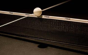 сетка, мячик, настольный теннис, пинг-понг