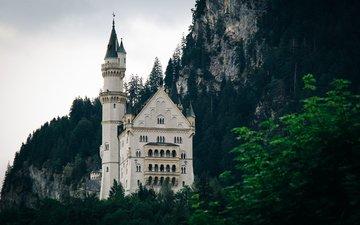 деревья, горы, замок, башни, окна