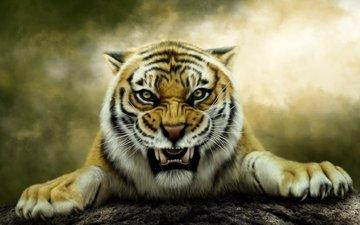тигр, хищник, фотошоп, оскал, нelena