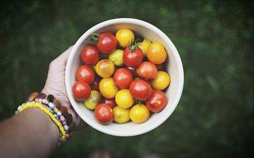 рука, овощи, помидоры, томаты